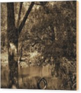 The Old Tire Swing Wood Print
