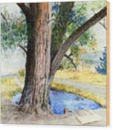 The Old Tree Wood Print