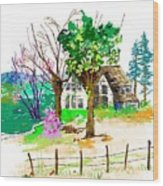 The Ole House In Spring Wood Print