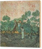 The Olive Pickers Wood Print by Vincent van Gogh