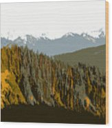 The Olympic Mountains Wood Print