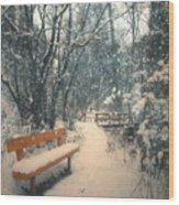 The Orange Bench Wood Print