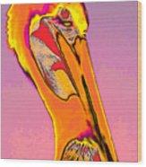 The Orange Pelican Wood Print
