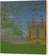 Fairytale Castle On A Meadow. Wood Print