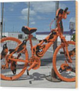 The Orioles Bicycle Wood Print