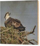 The Osprey Nest Wood Print