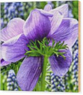 The Other Side Of Anemone   Wood Print