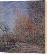 The Outskirts Of The Fontainebleau Forest Wood Print
