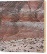 The Painted Desert  8020 Wood Print