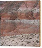 The Painted Desert  8020 Wood Print