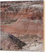 The Painted Desert  8024 Wood Print