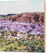 The Painted Desert  In Arizona Wood Print
