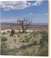 The Painted Desert Of Utah 2 Wood Print