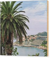 The Palm Is Always Associated With Summer, Sea, Travelling To Warm Countries And Rest Wood Print