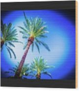 The Palms Of Scottsdale  Wood Print