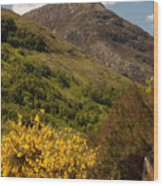 The Pap Of Glencoe Wood Print