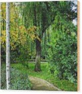 The Park Federico Garcia Lorca Is Situated In The City Of Granada, In Spain. Wood Print