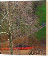The Parc Des Buttes-chaumont # 1. Wood Print