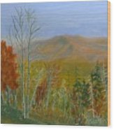 The Parkway View Wood Print