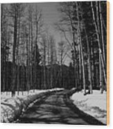 The Pass Wood Print