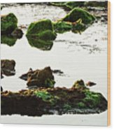 The Passetto Rocks And Water, Ancona, Italy Wood Print