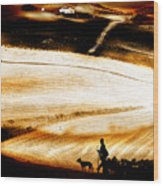 The Path Home Wood Print