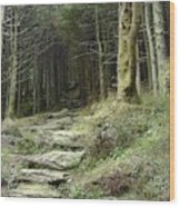 The Path Leading Up To  Wood Print