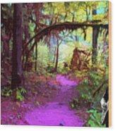 The Path Leads Ahead Wood Print