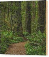 The Path Less Taken Wood Print