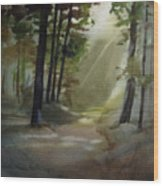 The Path Love Took Wood Print