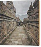The Path Of The Buddha #7 Wood Print