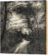 The Path Seldom Taken Wood Print