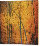 The Path To Autumn Wood Print