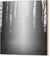The Path To Heaven Wood Print