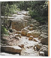 The Path To The Mountain Top Wood Print