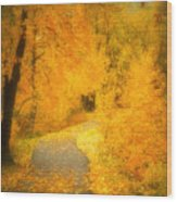 The Pathway Of Fallen Leaves Wood Print