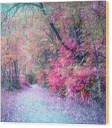The Pathway Of Gentle Memories Wood Print