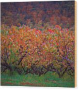 The Peach Orchard Wood Print