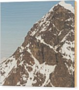 The Summit Of Mount Denali 19,000 Feet  Wood Print