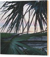 The Peeking Palms Wood Print
