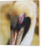 The Pelican Look Wood Print