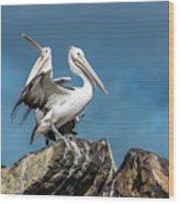 The Pelicans Wood Print