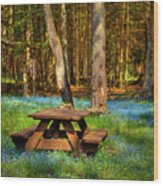 The Perfect Picnic Spot Wood Print