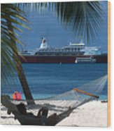 The Perfect Vacation Wood Print