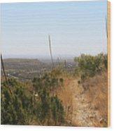 The Permian Reef Trail Wood Print