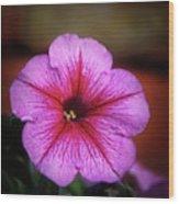The Petunia Wood Print