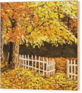 The Picket Fence Wood Print