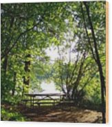 The Picnic Table Wood Print