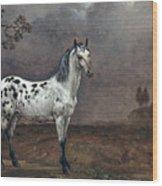 The Piebald Horse Wood Print
