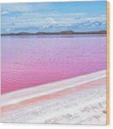 The Pink Diagonal Wood Print